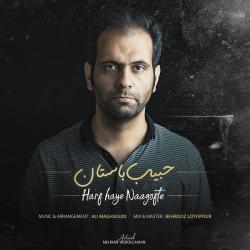 Habib Bastan - Harfhaye Nagofte