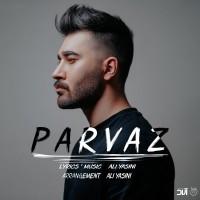 Ali Yasini - Parvaz
