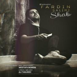 Fardin Salimi - Shab