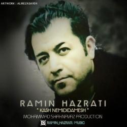 Ramin Hazrati - Kash Nemididamesh