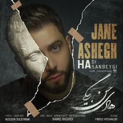 Hadi Hasanbeygi - Jane Ashegh