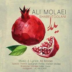 Ali Molaei - Shabe Toolani