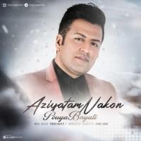 Pouya Bayati - Azyatam Nakon
