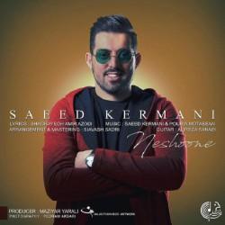 Saeed Kermani - Neshoone