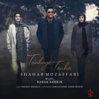 Shahab Mozaffari - Tanhaye Tanha
