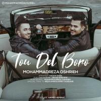 Mohammadreza Oshrieh - Too Del Boro