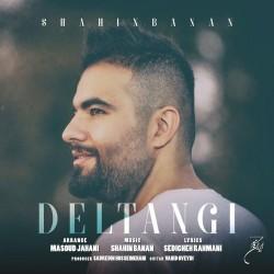 Shahin Banan - Deltangi