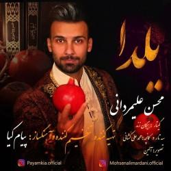 Mohsen Alimardani - Yalda