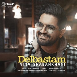 Sina Shabankhani - Hesse Man