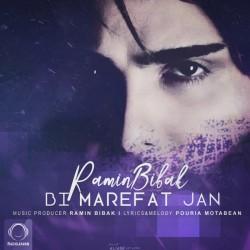 Ramin Bibak - Bi Marefat Jan