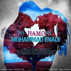 Mohammad Enadi - To Hamooni