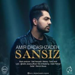 Amir Dadashzadeh - Sansiz