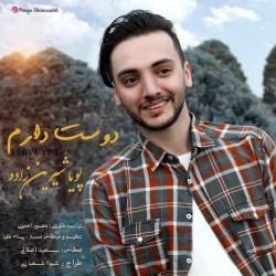 Pouya Shirinzadeh - Dooset Daram