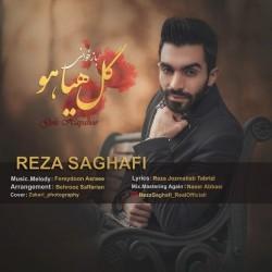 Reza Saghafi - Gole Hayahoo