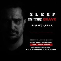 Silent Light - Sleep In The Grave