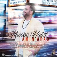 Amin Arad - Khoobe Halet