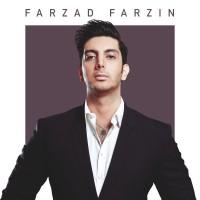 Farzad Farzin - Negaranetam ( Live )