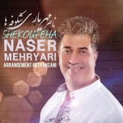 Naser Mehryari - Shekoufeha
