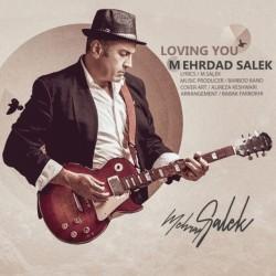 Mehrdad Salek - Loving You