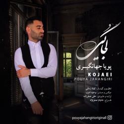 Pouya Jahangiri - Kojaei