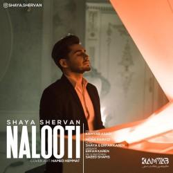 Shaya Shervin - Nalooti