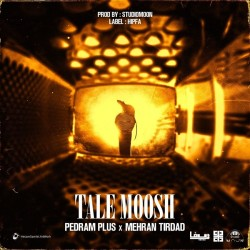 Mehran Tirdad Ft Pedram Plus - Tale Moosh