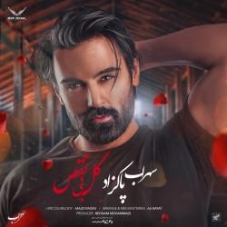 Sohrab Pakzad - Gole Bi Naghs