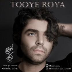 Mohammadreza Karimi - Tooye Roya