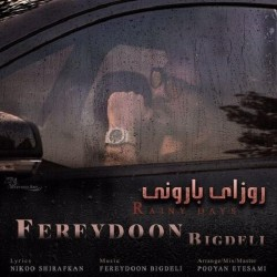 Fereydoon Bigdeli - Rainy Days