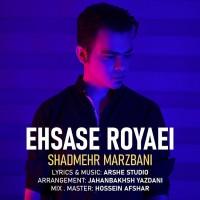 Shadmehr Marzbani - Ehsase Royaei