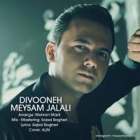 Meysam Jalali - Divooneh