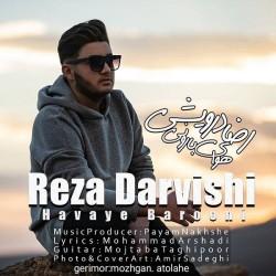 Reza Darvishi - Havaye Barooni
