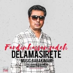 Fardin Hasanzadeh - Delam Asirete