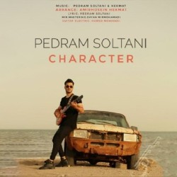 Pedram Soltani - Character