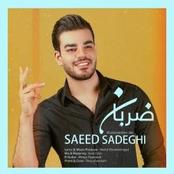 Saeed Sadeghi - Zaraban