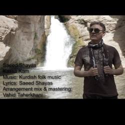 Saeed Shayas - Kassa Kam