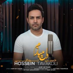 Hossein Tavakoli - Del Mibazam