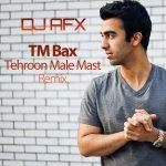 TM Bax - Tehroon Male Mast ( Remix )