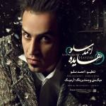 Ahmad Solo - Hayedeh