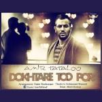 Amir Tataloo - Dokhtare Too Por