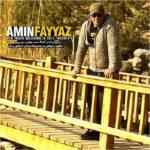 Amin Fayyaz - Arezoo