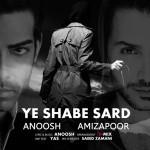 Anoosh Ft Amizapoor - Ye Shabe Sard