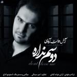 Arash Dolatabadi - Dosam Nadareh