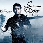 Meysam Ebrahimi - Shokoohe Javdan