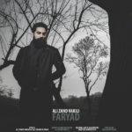 Ali Zand Vakili - Faryad