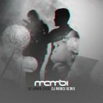 Sirvan Khosravi - Be Hamin Zoodi ( Remix )