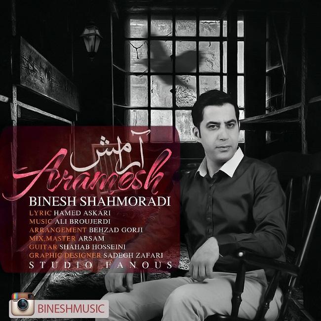 Binesh Shahmoradi - Aramesh