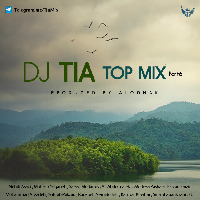 Dj Tia - Top Mix ( Part 6 )