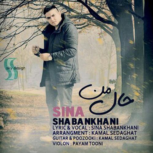 Sina Shabankhani - Hale Man