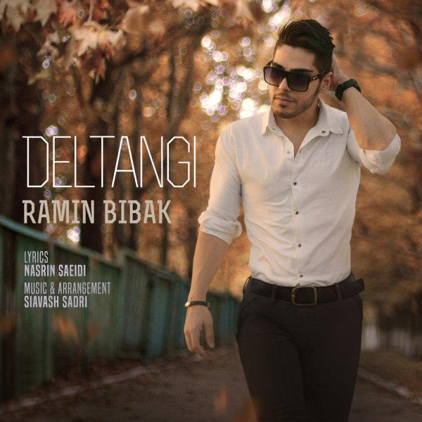 Ramin Bibak - Deltangi